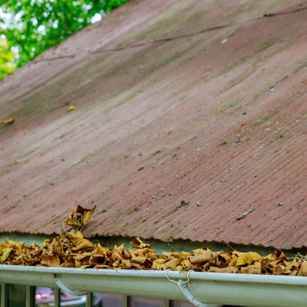 yellow-leaves-are-covered-with-iron-gutter-cover-o-K3TUMDX-min